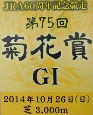 2014kiku2
